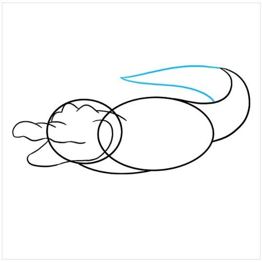 آموزش نقاشی تمساح برای کودکان مرحله پنجم