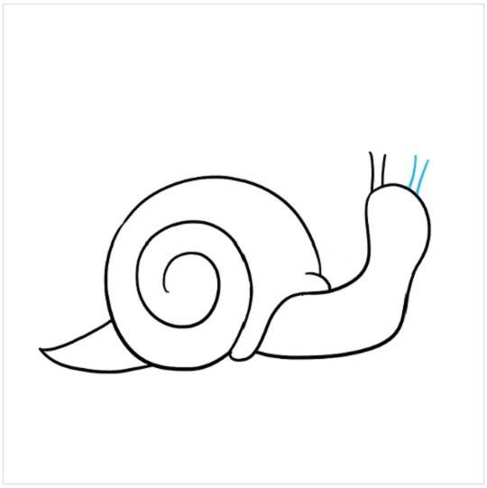 روش کشیدن نقاشی حلزون مرحله ششم