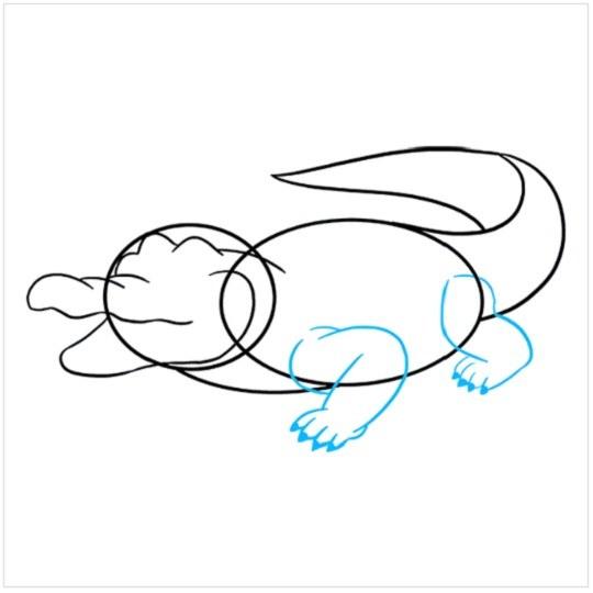 آموزش نقاشی تمساح مرحله ششم