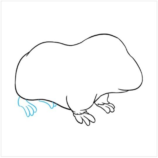 نقاشی کودکانه خوکچه هندی مرحله هفتم