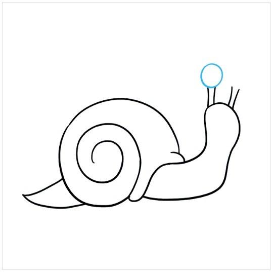 نقاشی حلزون برای بچه ها