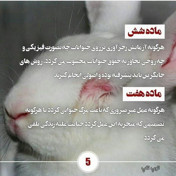 عکس های دیدنی از حمایت از حیوانات