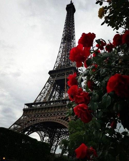 عکس برج ایفل برای پروفایل