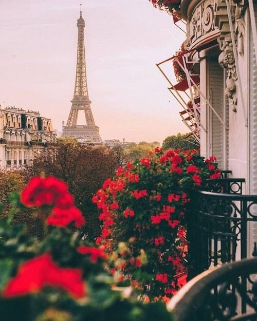 زیباترین تصاویر برج ایفل