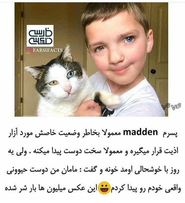 عکس حمایت از حیوانات خانگی