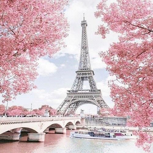 عکس زیبا از برج ایفل پاریس
