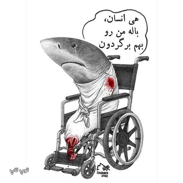 عکس نوشته های حمایت از حیوانات