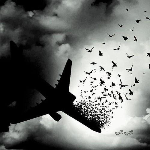 عکس برای تسلیت سقوط هواپیمای اوکراین