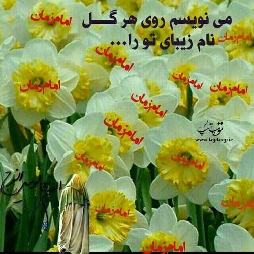 شعرهای قشنگ درباره گل نرگس