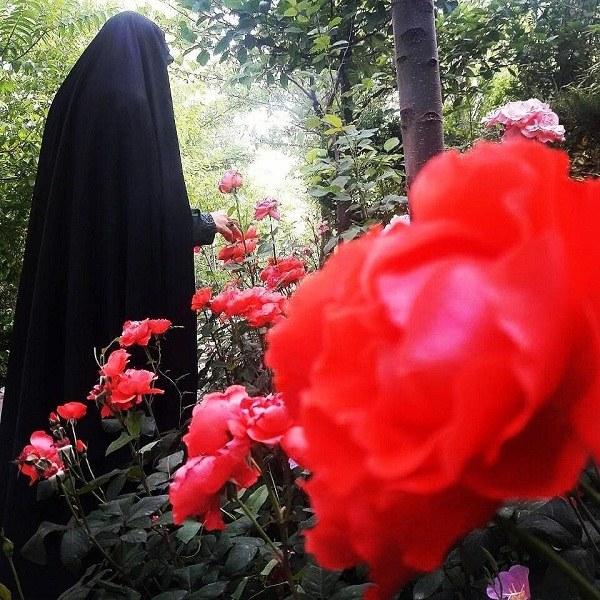 عکس پروفایل دختر چادری با گل رز قرمز