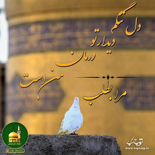 عکس نوشته دل تنگم امام رضا مرا بطلب