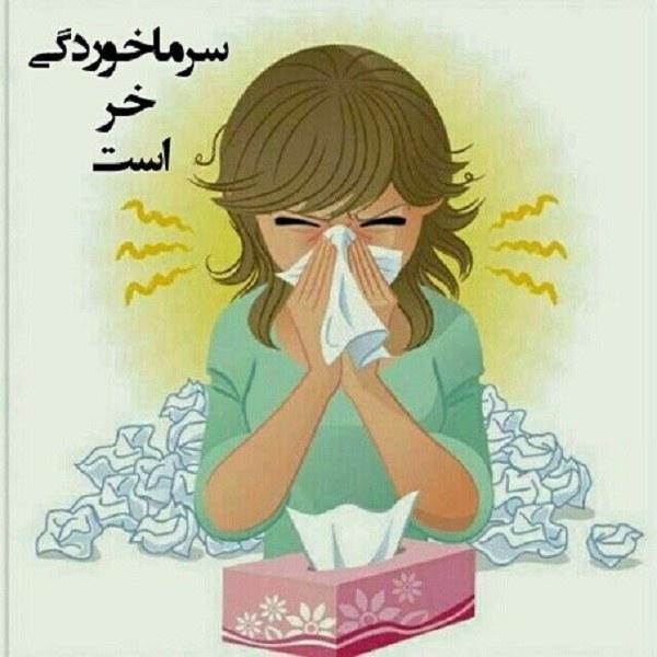 سرما خوردگی خر است عکس
