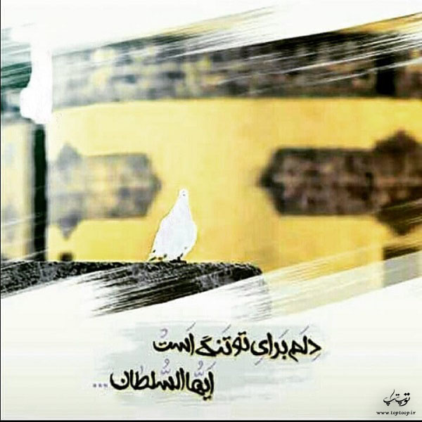 عکس نوشته دلتنگ امام رضام