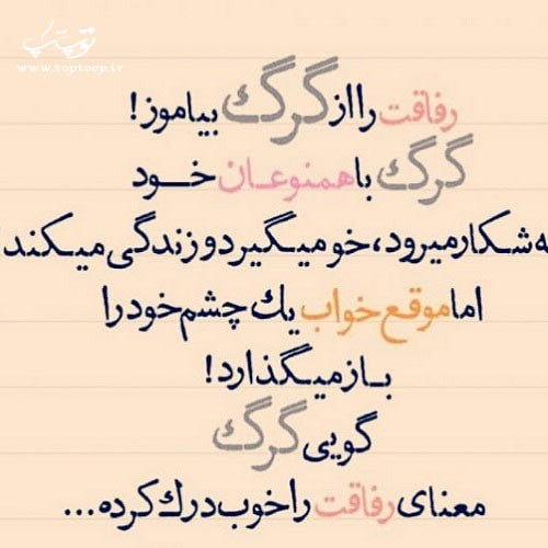 عکس نوشته رفاقت را از گرگ بیاموز