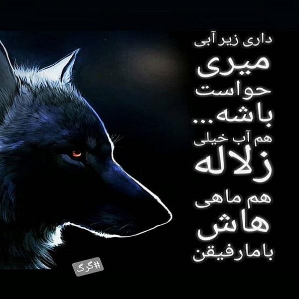 عکس نوشته گرگ ها