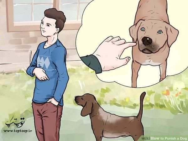 روشهای تنبیه سگ