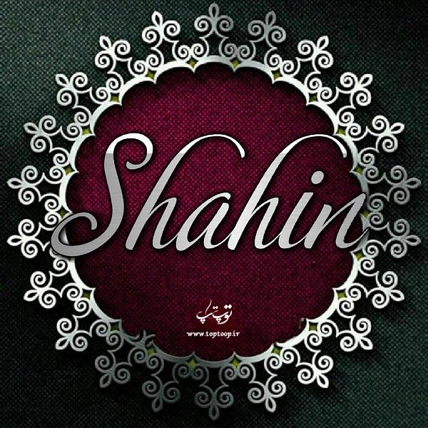 عکس نوشته اسم شاهین انگلیسی