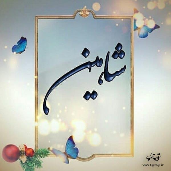عکس پروفایل اسم شاهین