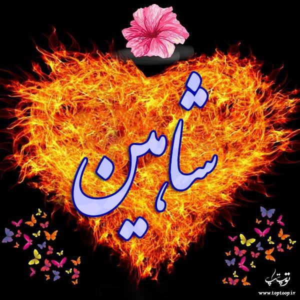 عکس نوشته قلبی اسم شاهین