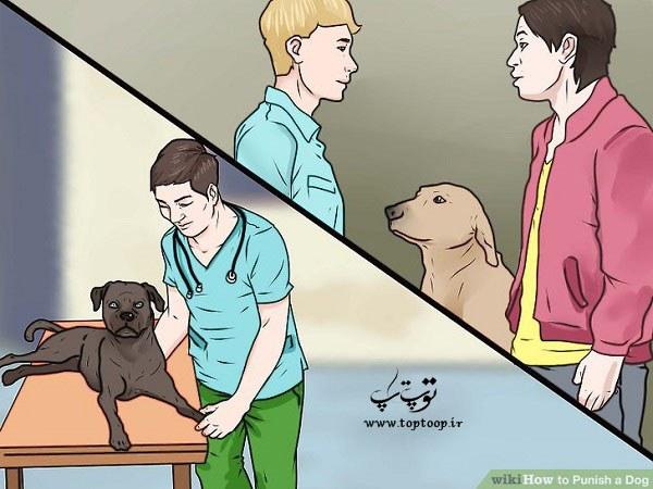 تنبیه سگ ، آموزش تنبیه سگ