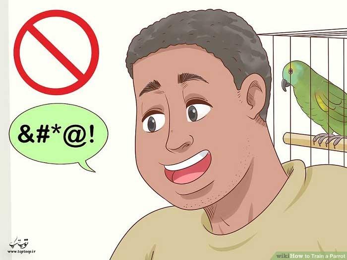 مراقب طرز حرف زدنتان با طوطی باشید