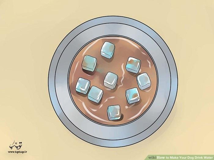 در روزهای گرم قالب یخ به آب اضافه کنید