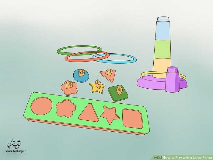 از پازل ها برای بازی با طوطی استفاده کنید