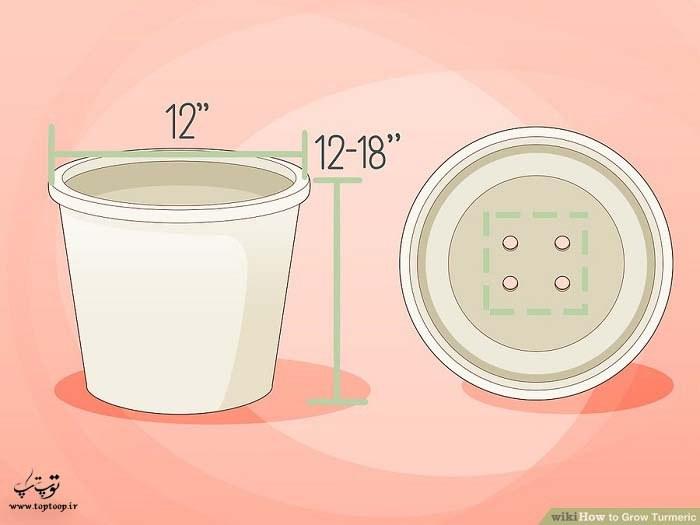تهیه گلدان برای پرورش زردچوبه در خانه