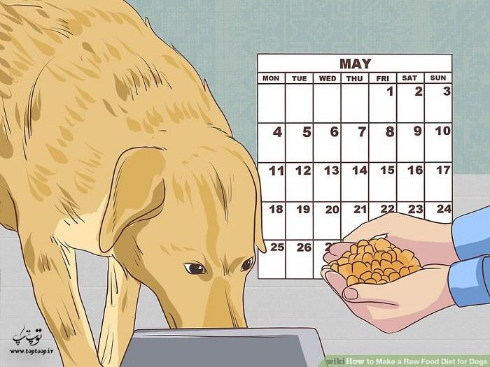 اطلاع از رشد طبیعی و مورد نیاز سگ
