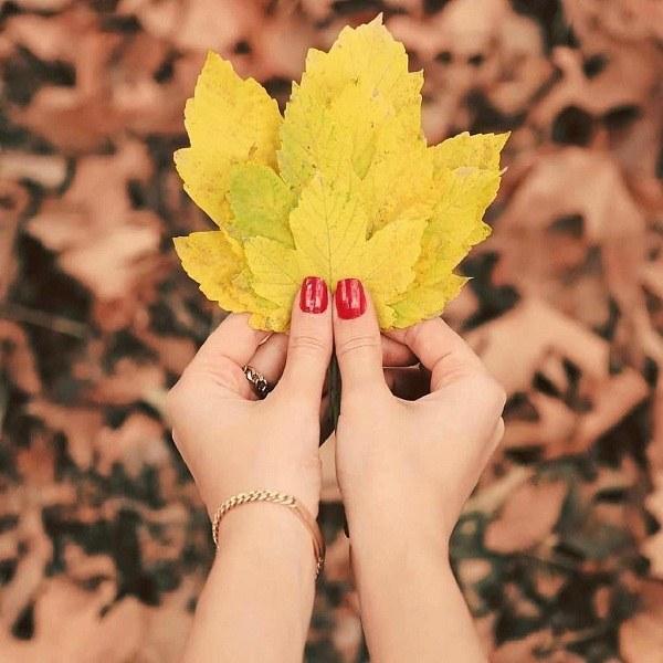 عکس دختر برگ زرد دستش باشه واسه پروفایل