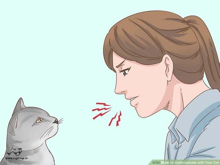 دستور دادن به گربه برای برقراری ارتباط