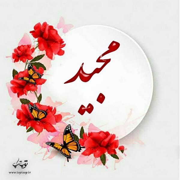 عکس پروفایل اسم مجید