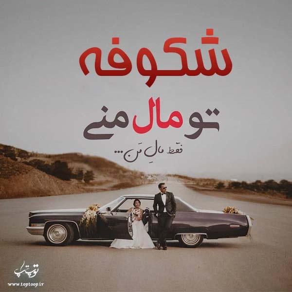 عکس نوشته اسم شکوفه برای پروفایل