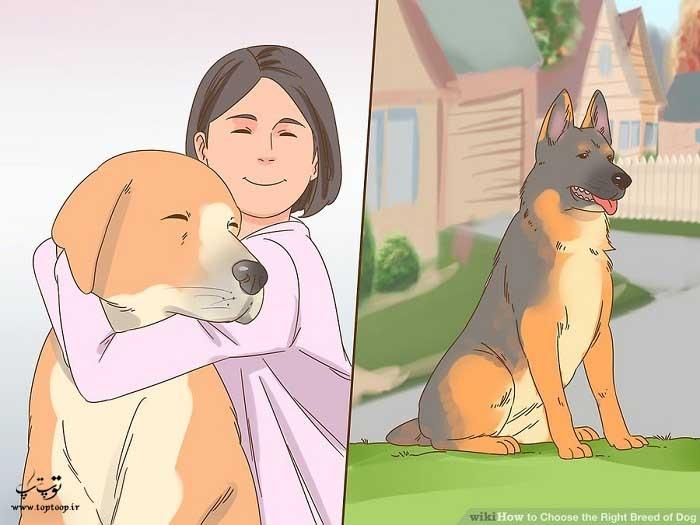 شناخت خلق و خوی سگ