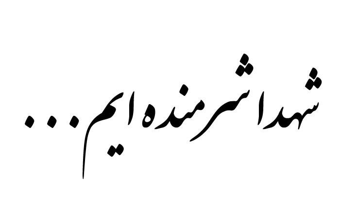 شعر زیبا برای شهید وطن