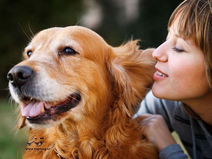 حرف زدن با سگ ، چگونگی صحبت با سگ