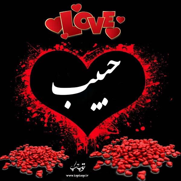 لوگوی اسم حبیب