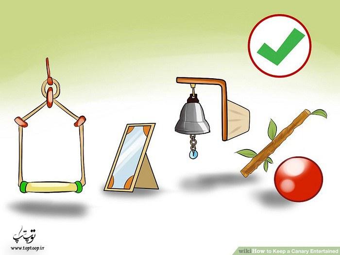 اسباب بازی برای قناری ، سرگرم کردن قناری با اسباب بازی