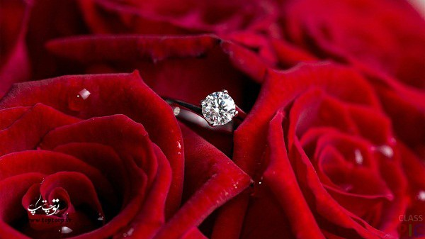 اشعار کارت عروسی