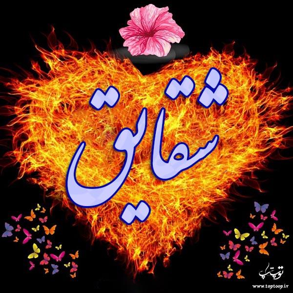 عکس قلب آتشین اسم شقایق