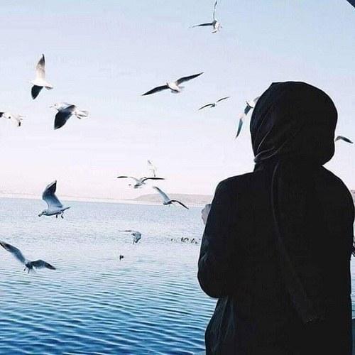 عکس ساحل دریا و مرغابی برای پروفایل