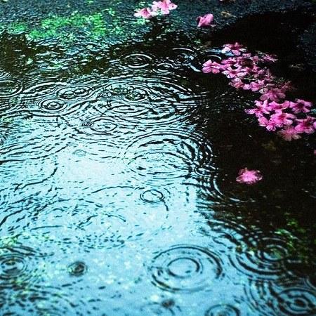 عکس پروفایل بارش باران