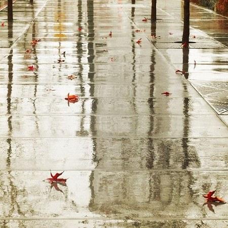 عکس پروفایل باران و برگ های پاییزی