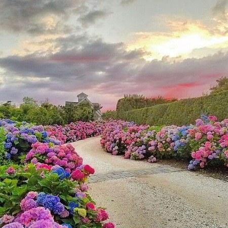 عکس پروفایل طبیعت زیبا و هوای صاف