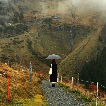 پروفایل طبیعت بارانی