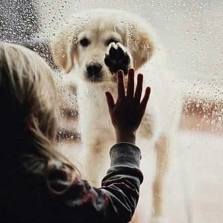 عکس پروفایل باران دخترونه