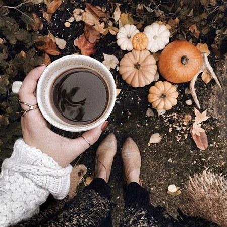 عکس پروفایل طبیعت پاییزی و فنجان قهوه