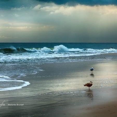 عکس پروفایل ساحل و دریا