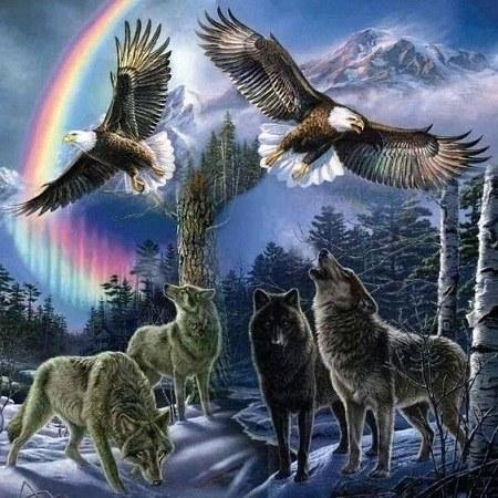 عکس پروفایل عقاب و گرگ