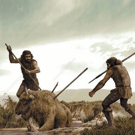 عکس شکار حیوانات توسط انسان نخستین